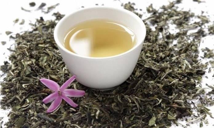 Sinameki Çay