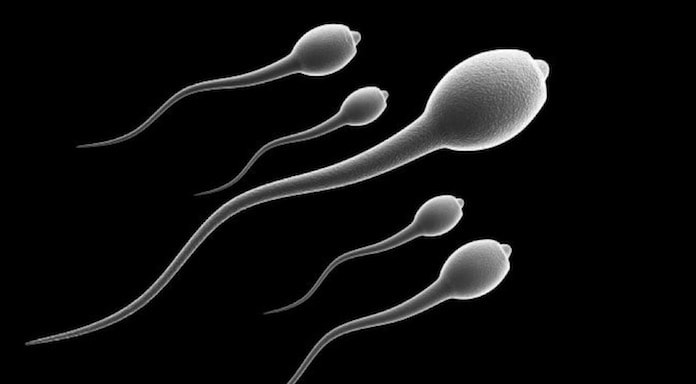 Sperm Alerjisi