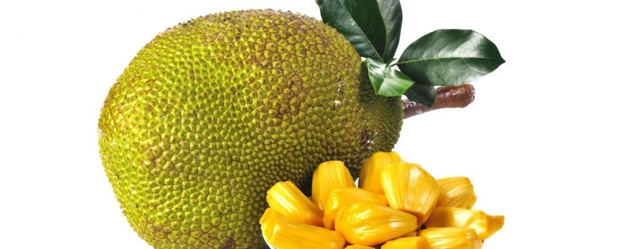 Jackfruit Meyvesi