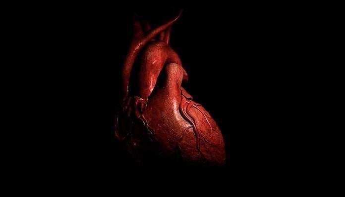 Acik Kalp Ameliyati