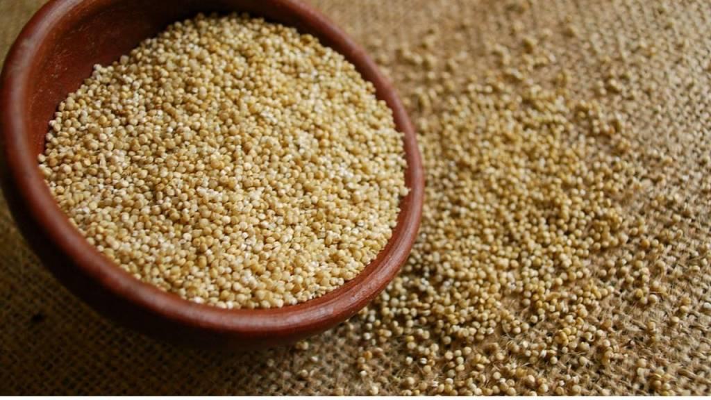 Kinoa Tohumları ve Zayıflama
