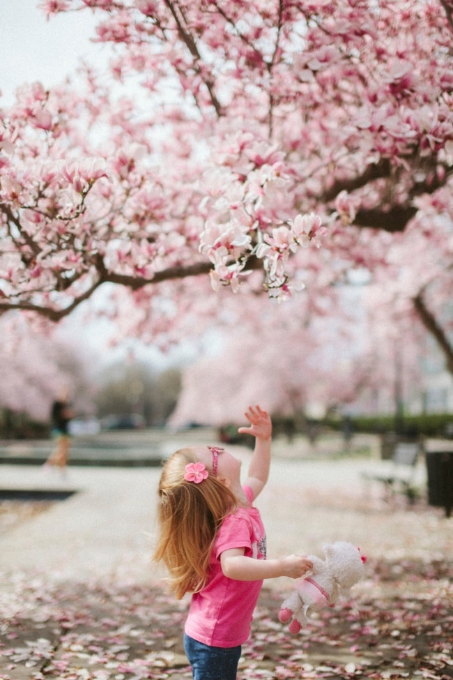 Hayatın Harika Oluşunu Hissetmek İçin 10 Yöntem